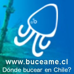 Buceame, dónde bucear en Chile?